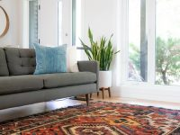How to choose the best carpet options for your flooring project?