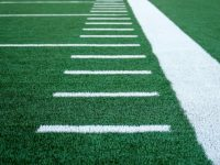 Different Ways to Use Synthetic Grass at Home or at the Office